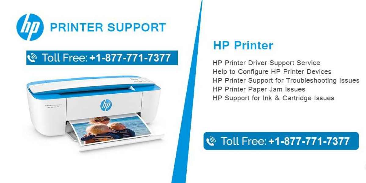 How to Fix HP Printer Not Responding or Working Mac or Windows PC | HP Printer Support Number