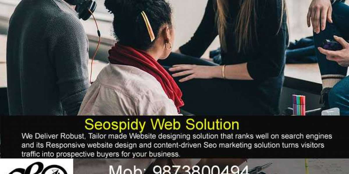 Seospidy introduce low cost website design package for local business