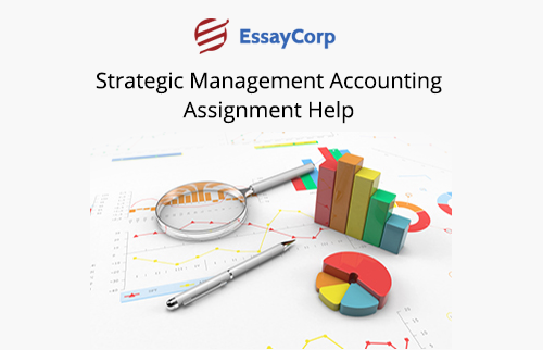 Strategic Management Accounting Assignment Help Online