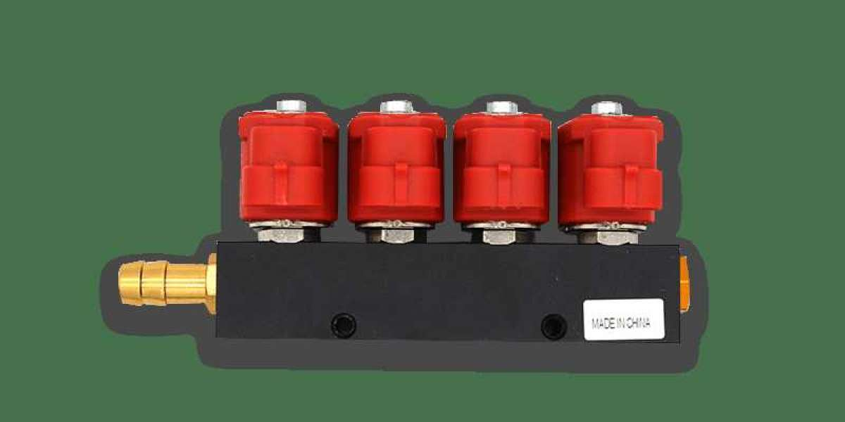 What Are The Characteristics Of The LPG CNG Injector