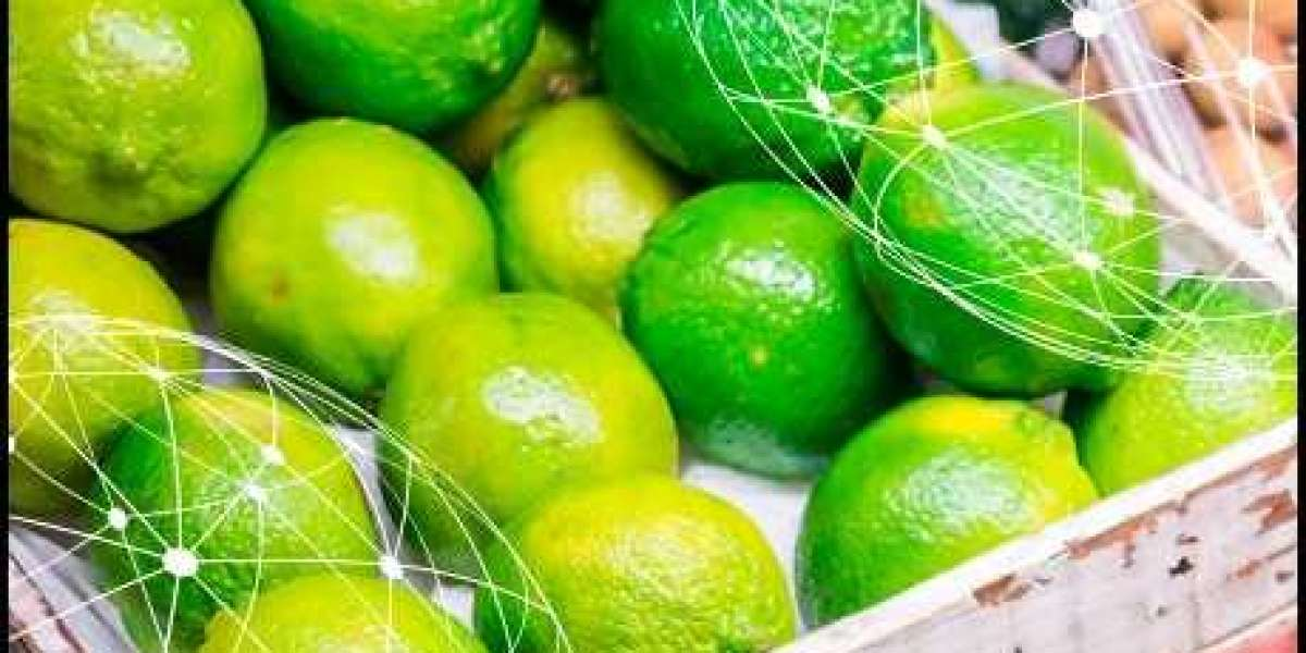 Lime Market Major Companies Operating in the Globally by 2027