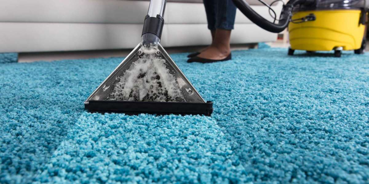 Advantages of Carpet Cleaning by a Professional