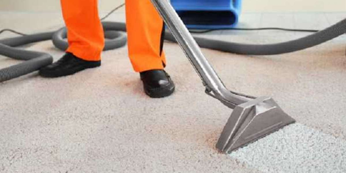 Quick Tips To Protect Your Carpet